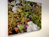 Photo Canvas, image digitally printed on canvas material and stretched over frame